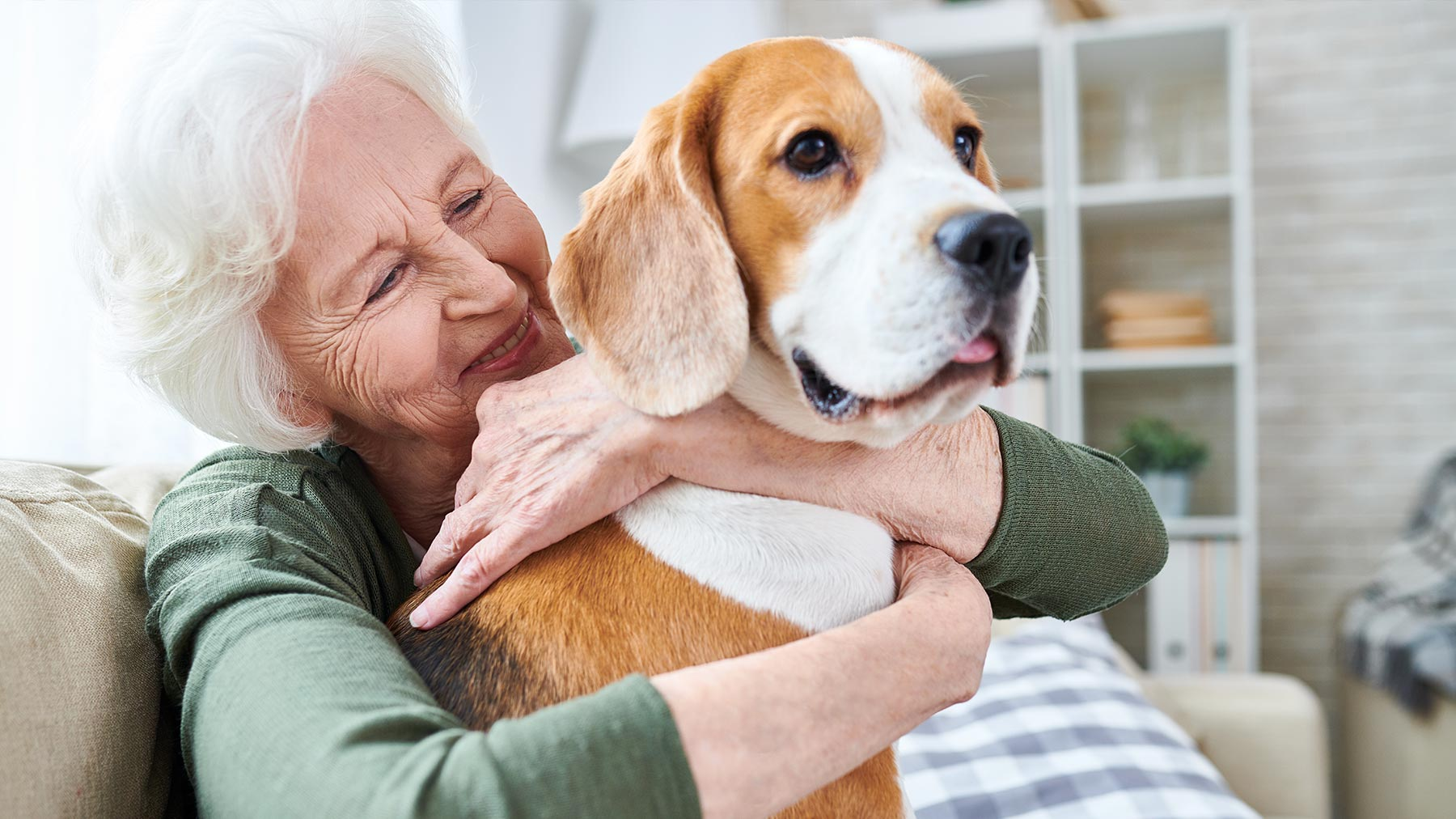 Benefits of Animal Therapy